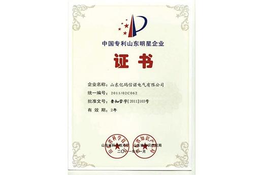 中國專利山東明星企業