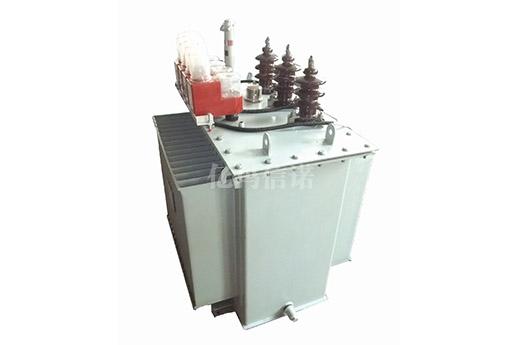 L(J)MZD-0.5FSYD型計量用低壓防竊電計量箱
